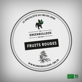 INFUSION FRUITS ROUGES BIO